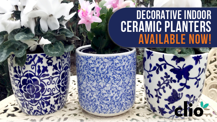 Blue Patterned Pots