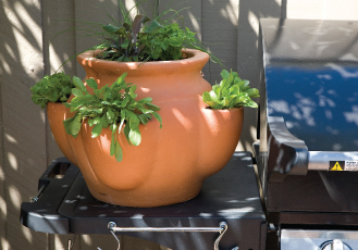 cottaSEAL Terracotta herb pot on barbeque